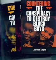 """Image result for countering the conspiracy to destroy black boys"""""""